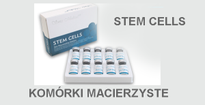 Stem Cells Komórki macierzyste